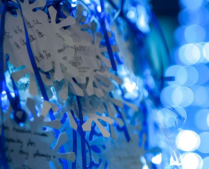 2010 SWFC CHRISTMAS DECORATION