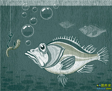 卡通动物 动物头像 老虎 狮子 乌鸦 哥特卡通 鱼 矢量71
