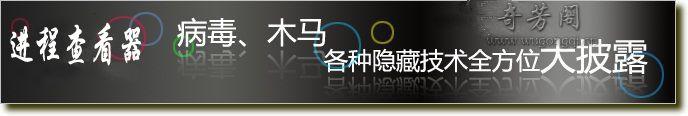 Process Hacker 中文汉化绿色版 – 轻松揪出隐藏的进程和服务