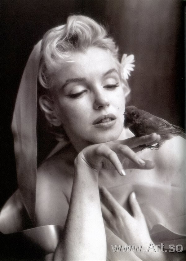 ����������ZSH9095186����������¶������Ƭ����ɨ���ͼƬMarilyn Monro poster photos HD scanning images����װ�λ�����ͼƬ-41M-3200X44