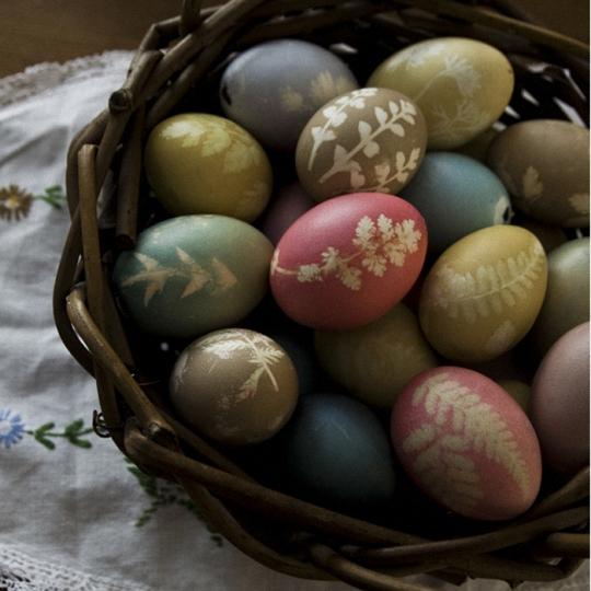 教你制作鲜花鸡蛋