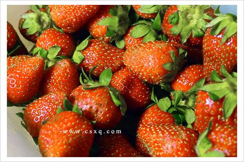 春天的馈赠·自制手工草莓酱