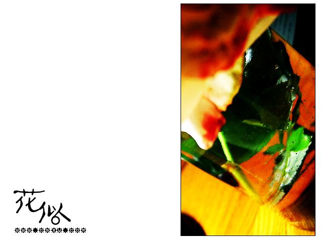 花似(拍摄日期:2004年04月24-25日)