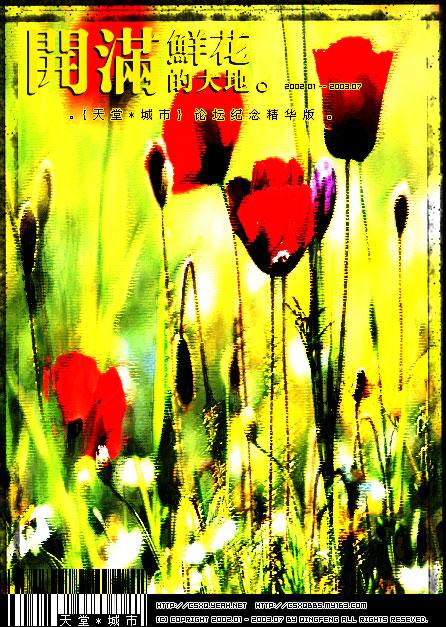 开满鲜花的大地(论坛~天堂·城市精华版)