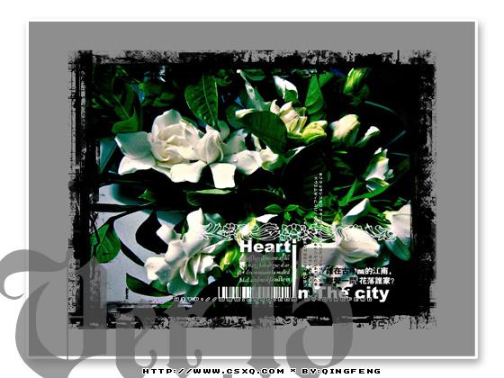 Web设计系列作品《城市心情》Ver.15