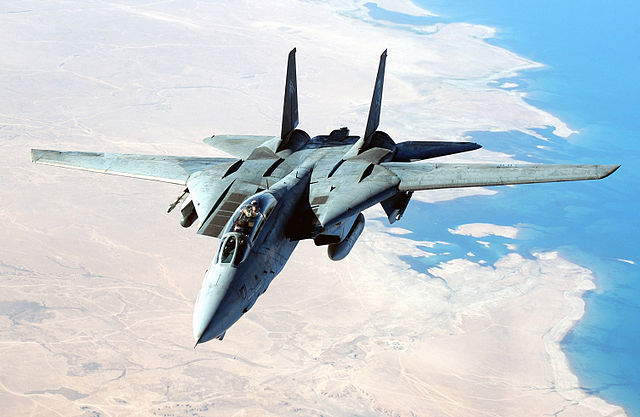 F-14雄猫战斗机-很有特点的后掠翼