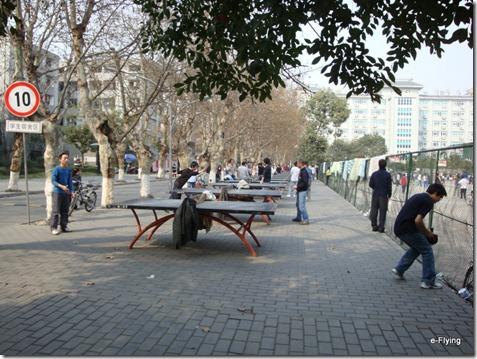 在乒乓球台挥洒汗水|艳阳天——悠闲的川大望江校区