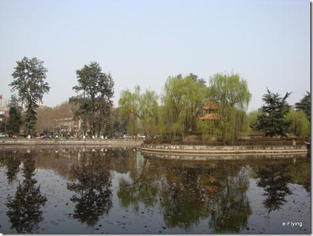 荷花池|艳阳天——悠闲的川大望江校区