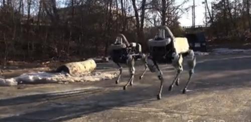 Google旗下的小型四足机器狗 Spot:到处跑/踹不倒Snip20150211_18