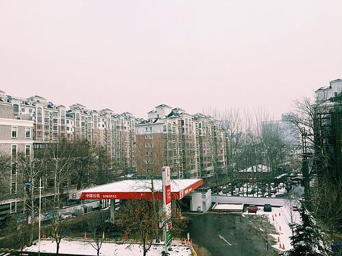 早春雪景-北京大兴
