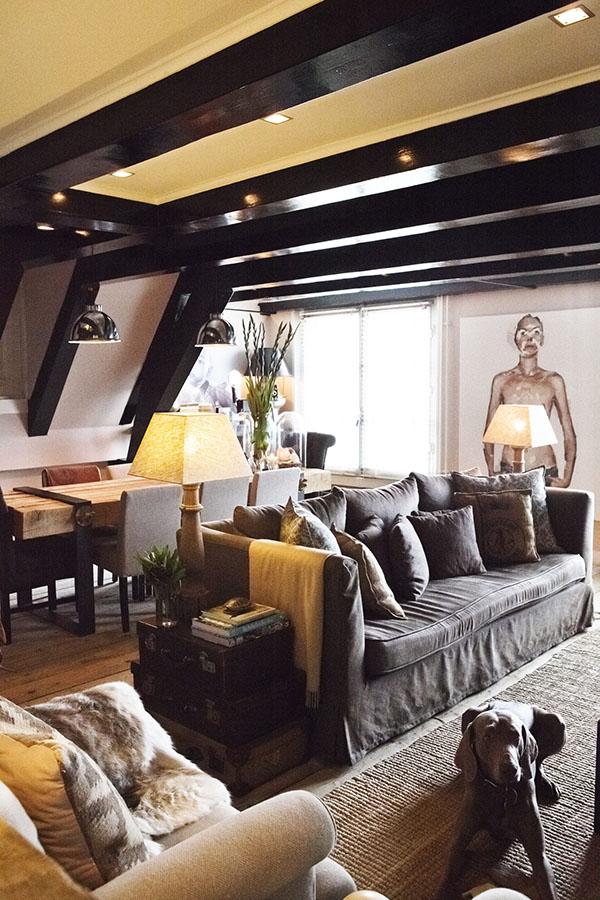 荷兰室内设计公司Bricks Amsterdam作品:Penthouse canals