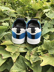 阿迪达斯软底 贝壳头童鞋 2
