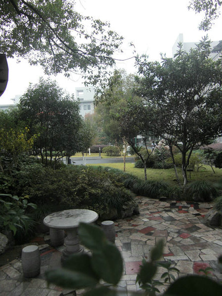 杭州什么的最美了 - 鸿笺小字 - 寒蝉十七眠