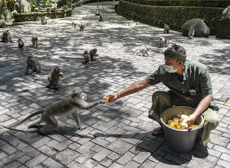 印尼疫情基本控制