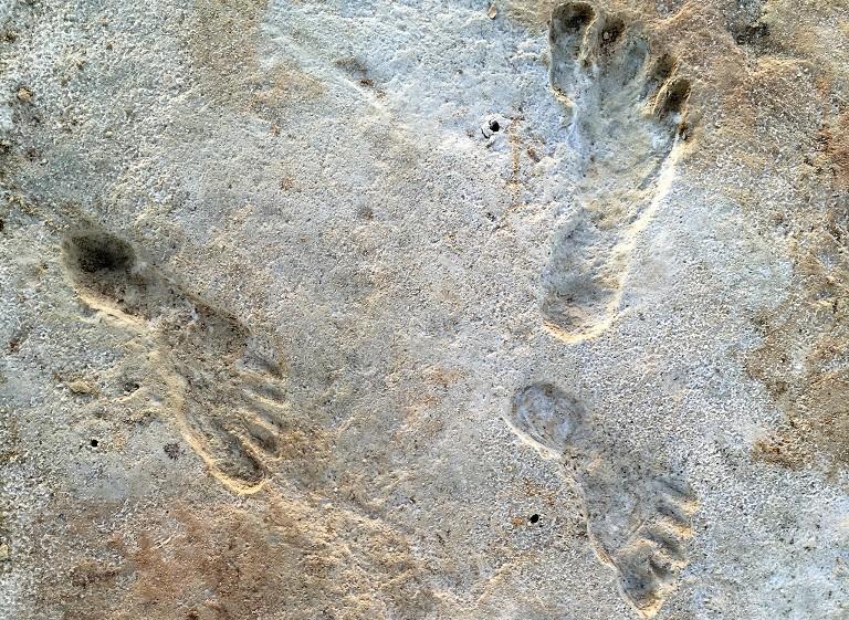美洲早期人类足迹