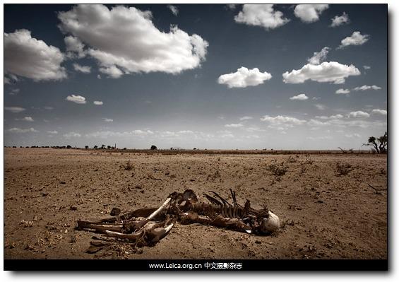 『摄影奖项』2010 Getty Grants for Editorial 摄影基金