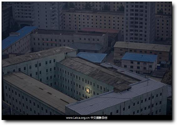 『荷赛』World Press Photo 2012获奖作品