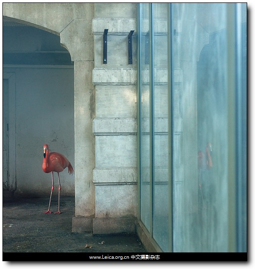 『摄影奖项』2012 HSBC 摄影奖