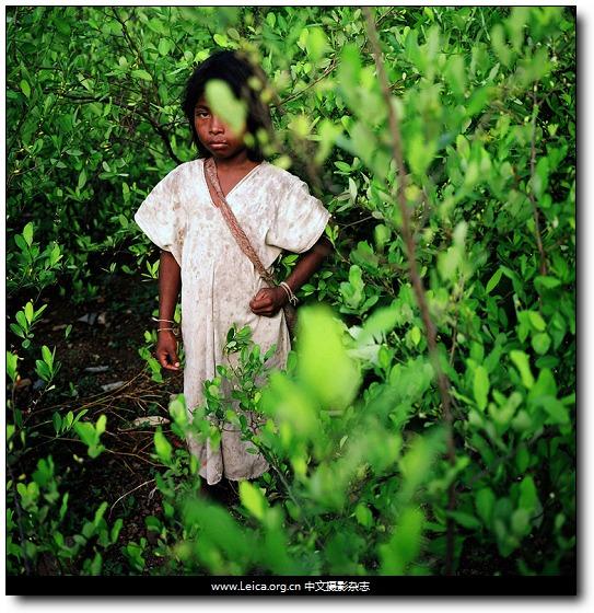 『他们在拍什么』Scott Dalton,哥伦比亚的百年孤独