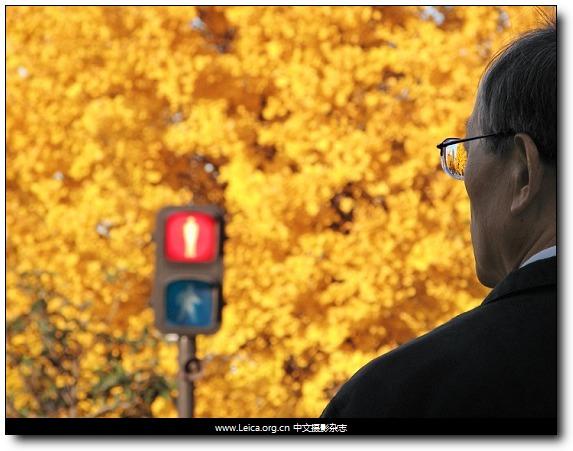 『他们在拍什么』Bruno Quinquet,东京上班族的生活