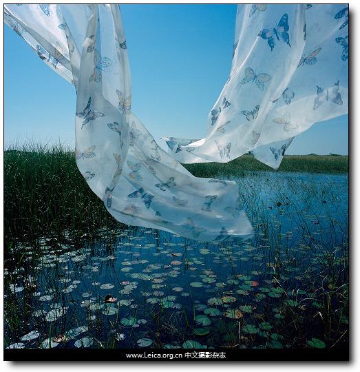 『女摄影师』Rebecca Reeve,窗帘外的世界 - 『Leica中文摄影杂志』 - ...摄影改变生活...中文独立摄影阅读...