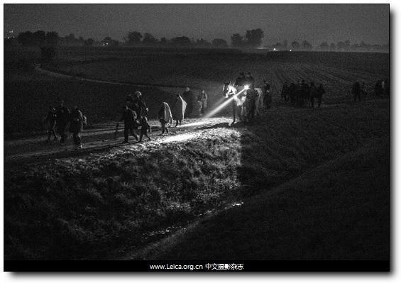 『摄影奖项』全球年度图片奖:第73届 POYi 获奖作品