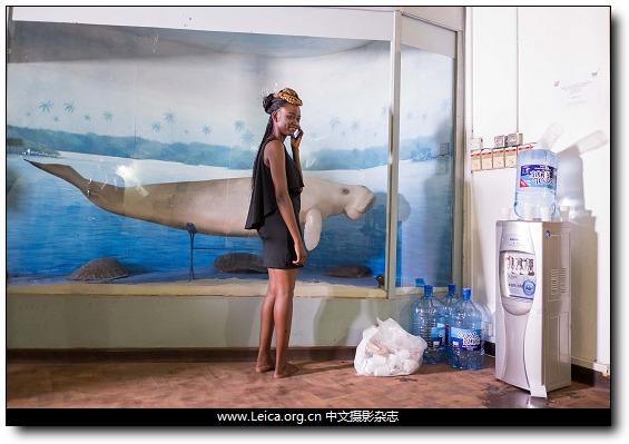 『iDaily』一周全球摄影图片精选:November 28 - Dec 4, 2016