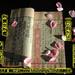 (佛教经典大乘佛法佛陀正法眼藏)【金刚般若波罗蜜经】(金刚经全文完整版)