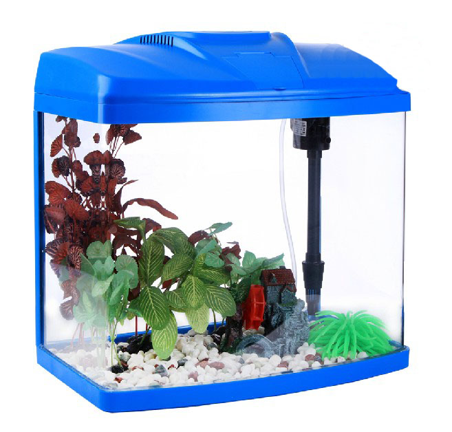 X 638 glass enclosed small ecological gift aquarium square for Square fish tank
