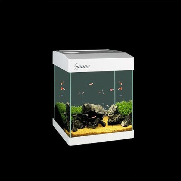 G20 mini glass enclosed small ecological gift aquarium for Square fish tank