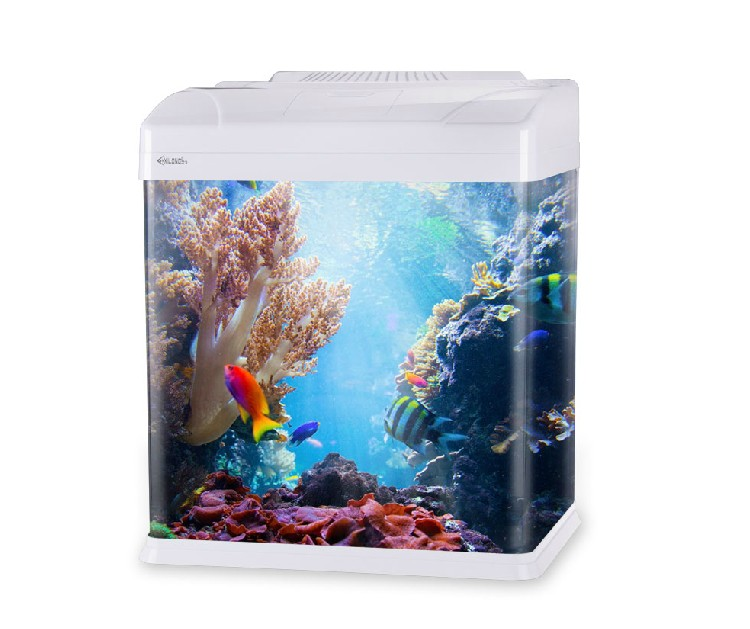 Glass enclosed small ecological gifts aquarium square fish for Square fish tank