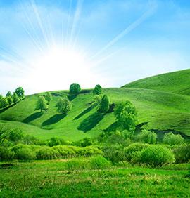 全绿色山坡草原唯美风景