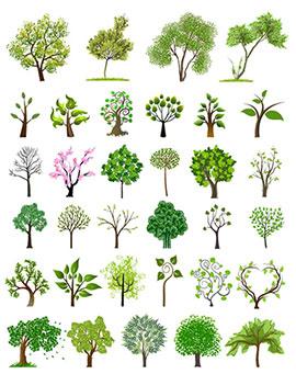 多品种树苗矢量图集锦