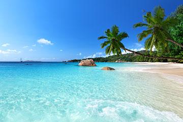 迷人海岛椰树唯美海景