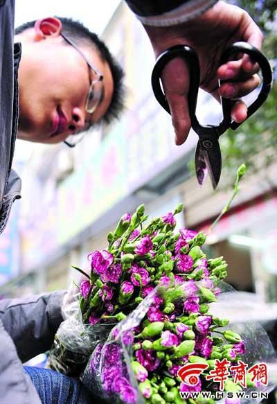鲜花店工作人员修剪从昆明空运来的鲜花