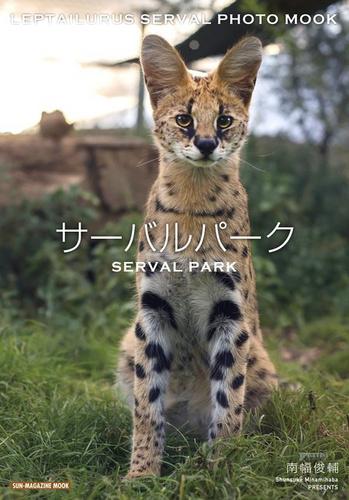 厉害了哟开心了哟,写真集《薮猫公园》上架被买空