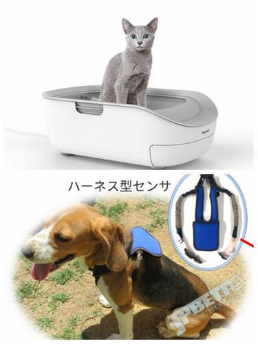 夏普拓展宠物健康服务,猫猫狗狗日常监测早发现早治疗