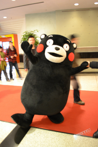 """886""""酷MA萌"""",那个把手套打进年糕的家伙中文名正式改叫""""熊本熊"""""""