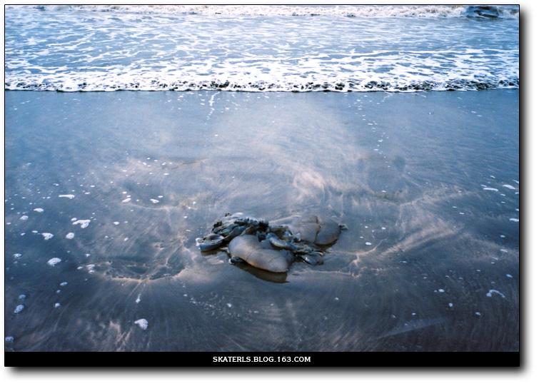 【lost china】Part 1.9-[beach]    - Leong Zhang 良少 摄影 - 随遇而安