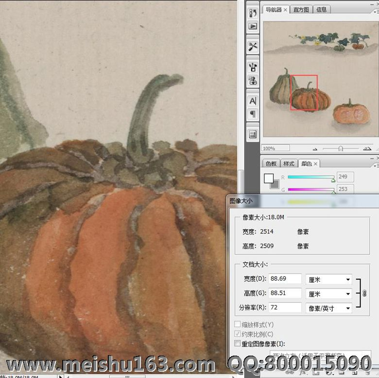 fsh03847 南瓜 30x30 田地 日本浮世绘日本浮世