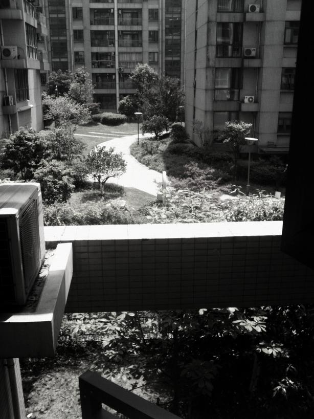 阳光洒满窗外