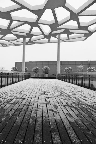 2010 年冬杭州大雪,摄于阿里巴巴园区。作者:姚升亮