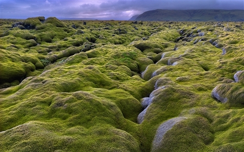 Win7主题《冰岛》官方下载(瀑布、清水、绿山,尽收眼底) | 爱软客