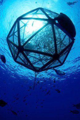 浮动海上渔场