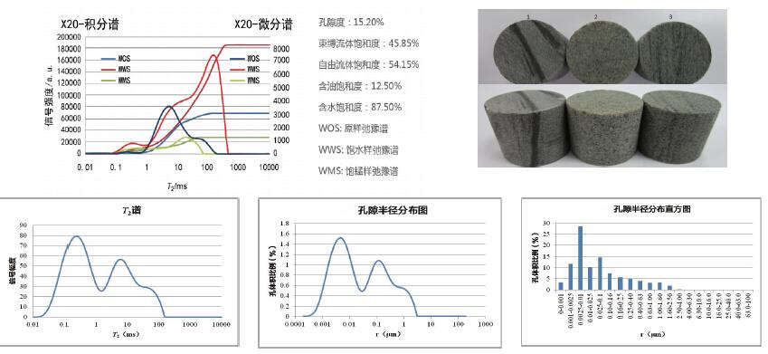 孔隙结构及流体饱和度分析.jpg