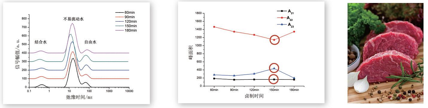 核磁共振肉品食品工艺评价研究应用技术解决方案