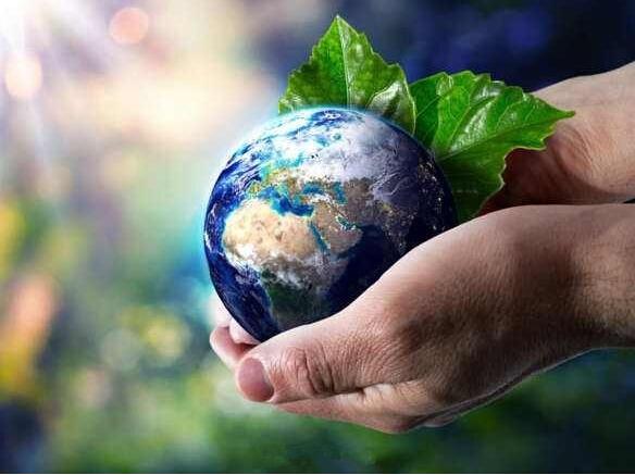 世界环境日,纽迈在行动