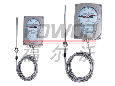 BWY系列变压器用油面温控器