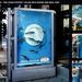 餐厅广告——鱼儿盘中游