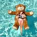 和路雪=泰迪熊?
